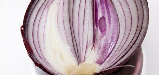onion-276585_1280